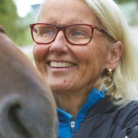veterinär ute häst
