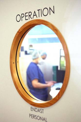 kirurgi-smadjur
